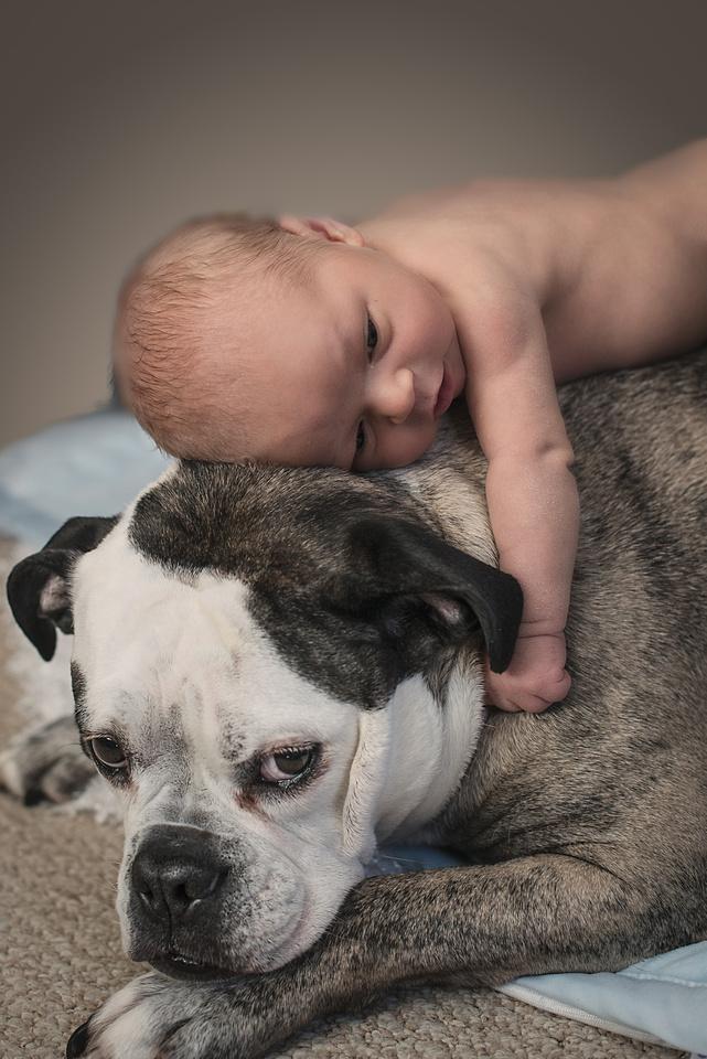 Newborn Photography, Buffalo, NY